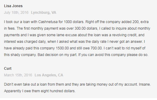 CashNetUSA review5